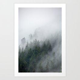 Foggy Morning 2 Art Print