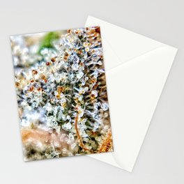Top Shelf Diamond OG Strain Buds Calyxes Amber Trichomes Close Up View Stationery Cards