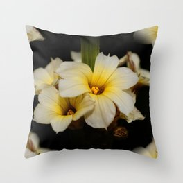 Yellow Mexican Satin Flowers Throw Pillow