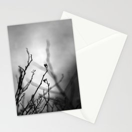 Augury in Grey Stationery Cards