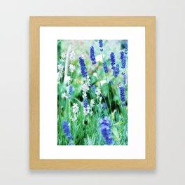 White & Blue Lavender Dream #1 #art #society6 Framed Art Print