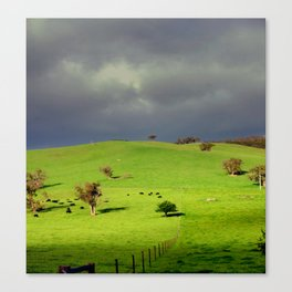Following the fence Line! Canvas Print