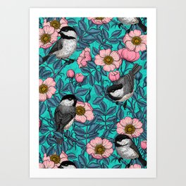 Chickadees in the wild rose, pink and blue Art Print