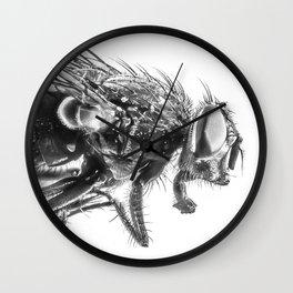 The Fly Wall Clock