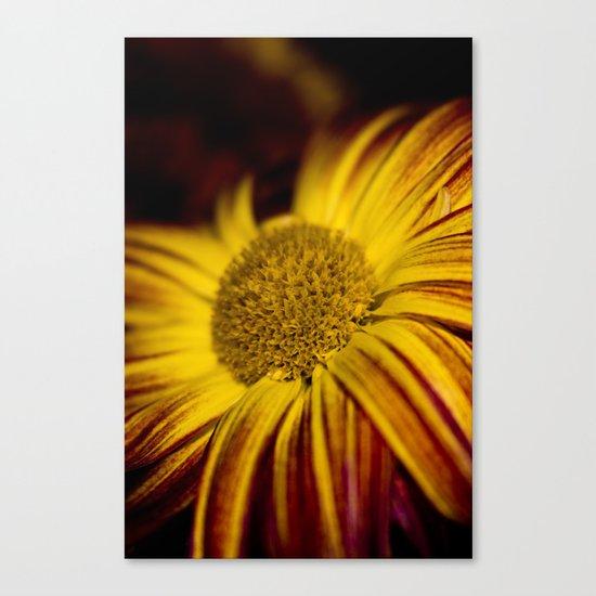 Yellow flower - Photo Canvas Print