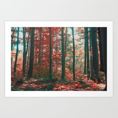into the woods 11 Art Print