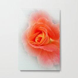 pastel pink shades Metal Print