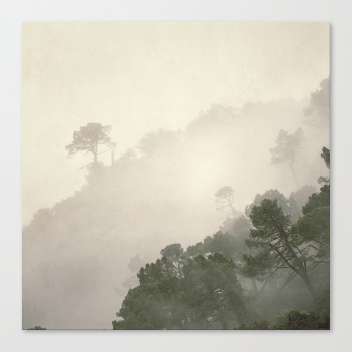"""Mountain light II"".(C) Foggy forest. Canvas Print"