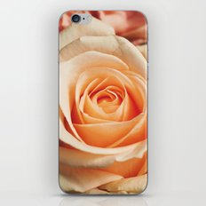 Romantic Rose Pink Rose iPhone Skin