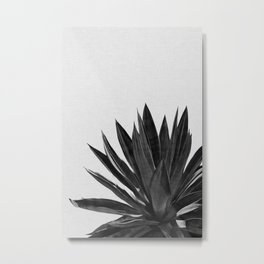 Agave Cactus Black & White Metal Print