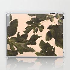 Botanical II - Day Laptop & iPad Skin