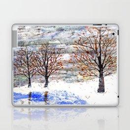 Snow Grey Skies over Moon Lake in Dewdrop Holler Laptop & iPad Skin