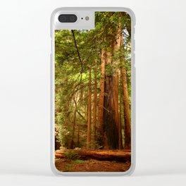 Muir Woods Walkway Clear iPhone Case