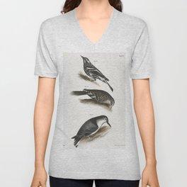 89 The Varied Creeping Warbler (Mniotilta varia) 90 The Brown Creeper (Certhia americana) 91 The Whi Unisex V-Neck