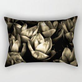 ...  lumen et umbra  ... Rectangular Pillow