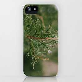 A Winter Water Drop iPhone Case