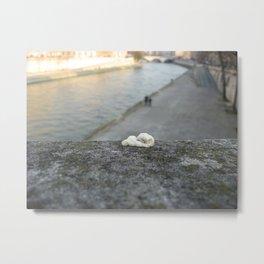 gum, Paris Metal Print