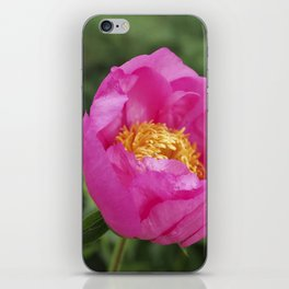 Peony Firelight - glowing pink petals iPhone Skin