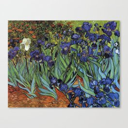 Irises -Vincent Van Gogh Canvas Print