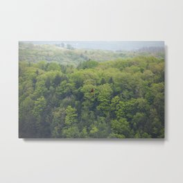 Flying Above the Tree Tops - Spring Trees  Metal Print
