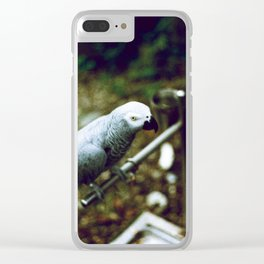 Parrot Land Clear iPhone Case