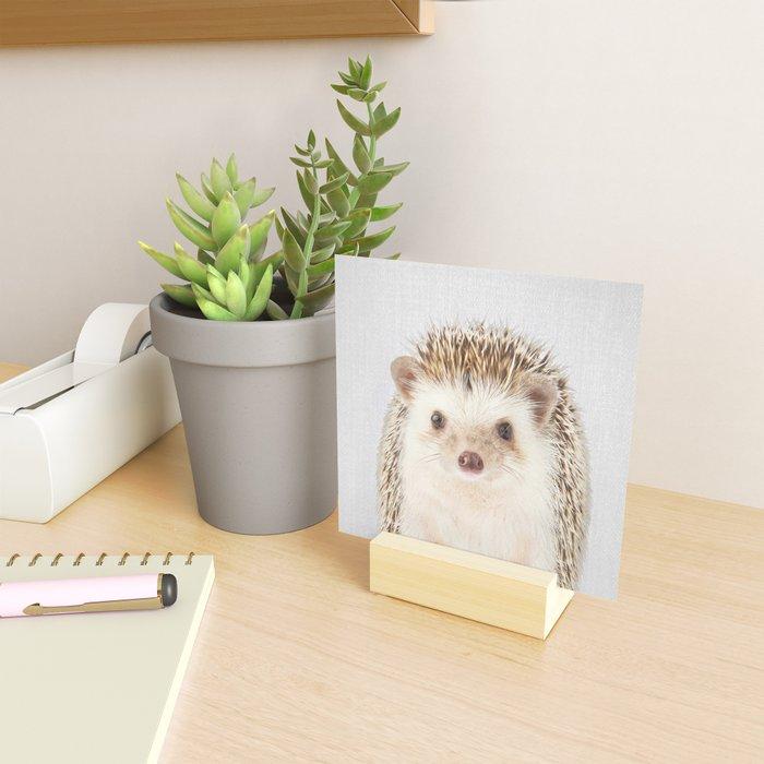 Hedgehog - Colorful Mini Art Print