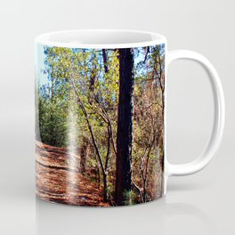 The Parting of Ways in Prescott National Forest Coffee Mug