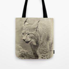 beautiful lynx Tote Bag