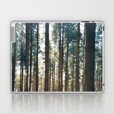 Into the trees... Laptop & iPad Skin