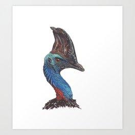 Southern Cassowary Art Print