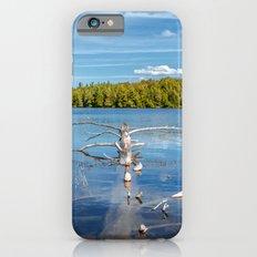 Smoke Lake iPhone 6s Slim Case