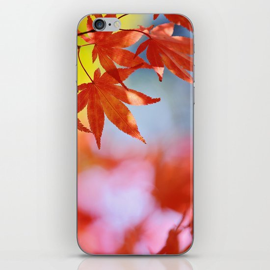 Autumn blush iPhone & iPod Skin