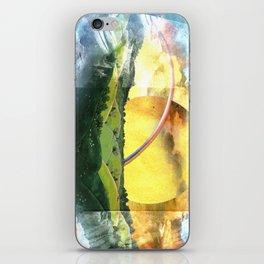 Sun and Rain iPhone Skin