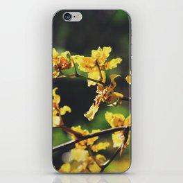 ʻOkika kūlina pohāpohā iPhone Skin