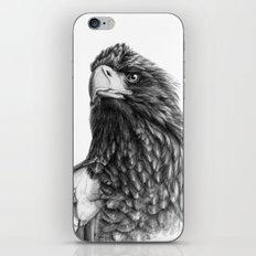 Steller's sea eagle G2013-073 iPhone & iPod Skin