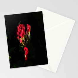 Shadow of Roses Stationery Cards