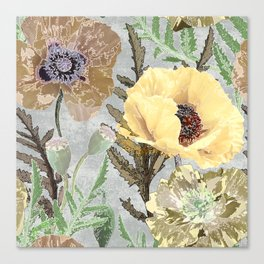 Yellow poppies. Canvas Print