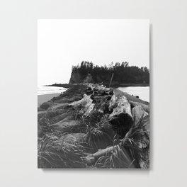 Dark Shore Metal Print