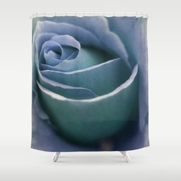 for the usual designers: another winter rose Shower Curtain