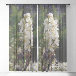 Blooming Chokecherry Stalk Sheer Curtain