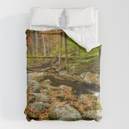 USA Tennessee Creek Autumn Nature forest Stones Trees brook Creeks Stream Streams Forests stone Comforters