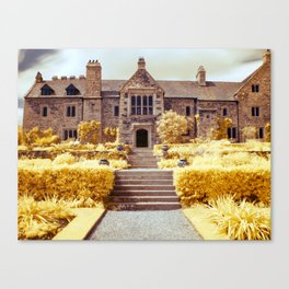 Into the manor Canvas Print