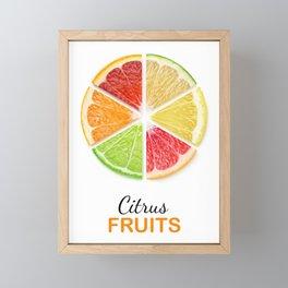 Citrus slices Framed Mini Art Print