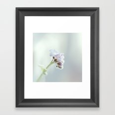 Lullaby Framed Art Print