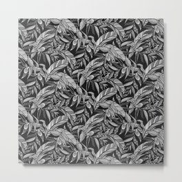Black and White Feathers Metal Print