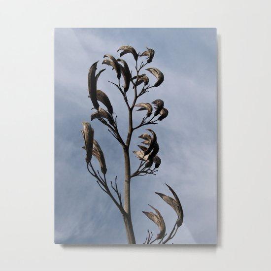 SCULPTURAL SEEDHEADS Metal Print