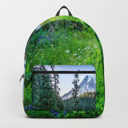 Rainier Wildflowers - Mt. Rainier in the Fall at Reflection Lake Backpack