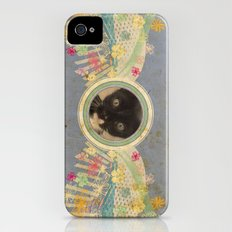 Kitten iPhone (4, 4s) Slim Case