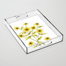Yellow black eyed Susans painting Acrylic Tray