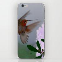hummingbird iPhone & iPod Skins featuring Hummingbird by dBranes